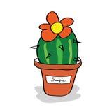 Cactus in een pot met markeringen Stock Fotografie