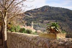 Cactus in een pot op een muur, een kerk, bomen en heuvel op achtergrond in Valldemossa, Mallorca, Spanje stock afbeelding