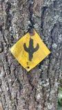 Cactus en árbol Imagenes de archivo