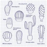 Cactus en bosquejo de los potes ilustración del vector