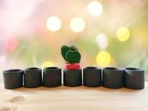 Cactus en forme de coeur dans des pots sur un plancher en bois Gravure du wor Images stock