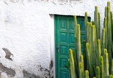 Cactus en oude houten deur Stock Fotografie