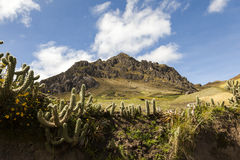 Cactus en rotsachtige pieken dichtbij Zumbahua royalty-vrije stock fotografie