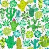 Cactus en succulent bloem naadloos patroon Het kan voor prestaties van het ontwerpwerk noodzakelijk zijn vector illustratie