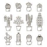 Cactus en succulents de vectorreeks van het lijnpictogram Exotische bloementuinsilhouetten De illustratie van het het overzichtso stock illustratie