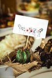 Cactus en una tabla festiva Fotos de archivo libres de regalías