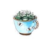Cactus en una taza watercolor ilustración del vector