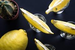 Cactus espinoso, limón y rebanadas amarillas brillantes del limón en tiros del tequila imagen de archivo