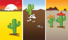 Cactus et désert Image stock