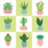 Cactus et plantes succulentes dans des pots Ensemble d'illustration de cactus tirés par la main et de succulents s'élevant dans d Photos libres de droits