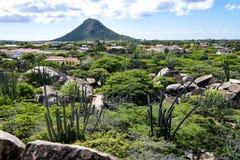 Cactus et roches devant Hooiberg, Aruba photographie stock libre de droits