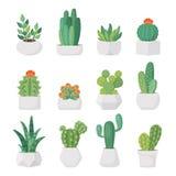 Cactus et succulents de bande dessinée dans l'ensemble de vecteur de pots illustration stock