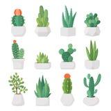 Cactus et succulents de bande dessinée dans l'ensemble de vecteur de pots illustration libre de droits