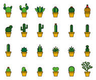 Cactus Filled Line Icons Stock Image