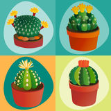 Cactus flat style nature desert flower green cartoon drawing graphic mexican succulent and tropical plant garden art. Cacti floral vector illustration. Style Stock Photo