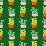 Cactus nature desert flower green mexican succulent tropical plant seamless pattern cacti floral illustration. Royalty Free Stock Photos