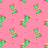 Cactus flower, seamless pattern. Royalty Free Stock Photos
