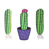 Cactus flower set. Hand drawn cacti home plant collection. Cactus icons set with black lines countur illustration on white background Royalty Free Stock Images