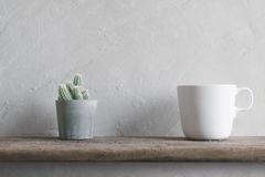 cactus flower with white coffee cup on wood Wall Shelves modern Stock Images