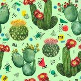 Cactus flowers royalty free illustration