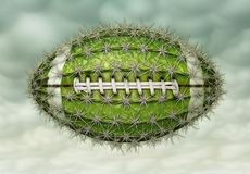 Cactus Football. Digital illustration of a football-shaped cactus Stock Photos
