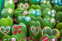 Cactus in the form of heart Stock Photography