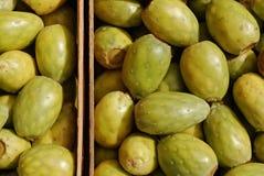 Cactus fruit. Background stock photos