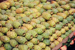 Cactus fruit Stock Photo