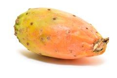 Cactus fruit Stock Image