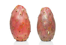 Cactus fruit. On a white background royalty free stock images