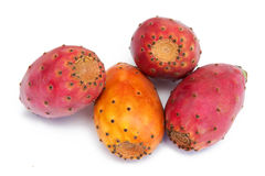 Cactus fruits. Isolated on the white Stock Photos