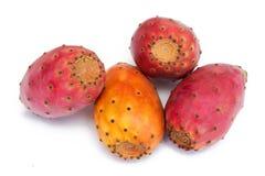 Cactus Fruits Isolated On White  Stock Photos