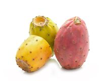 Cactus fruits on a white background Royalty Free Stock Image
