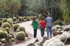Cactus garden family. Father daughter and son walking through a cactus garden royalty free stock images