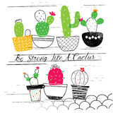 Cactus garden illustration Royalty Free Stock Photography