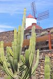 The Cactus Garden on Lanzarote, created by the artist Cesar Manrique. Royalty Free Stock Photography
