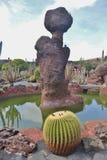 The Cactus Garden on Lanzarote, created by the artist Cesar Manrique. Stock Image