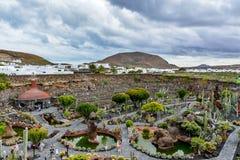 Cactus garden on Lanzarote island Stock Photography