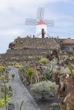 Cactus Garden in Lanzarote Royalty Free Stock Image