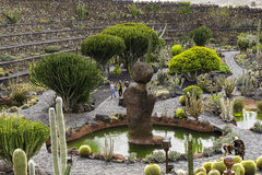 Cactus Garden in Lanzarote. Wide view of the cactus garden (jardin de cactus) designed by Cesar Manrique. Guatiza, Lanzarote, Canary Islands.Spain Stock Images