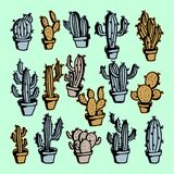 Cactus hand drawn with colorful vintage style collection set. royalty free illustration