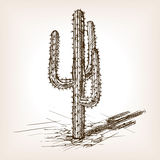 Cactus hand drawn sketch style vector vector illustration