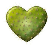 Cactus Heart. Digital illustration of a heart shaped prickly pear cactus Stock Image
