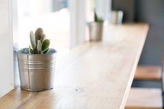 Cactus in het vaasdecor Royalty-vrije Stock Fotografie