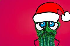 Cactus hipster man with santa hat. Tropical Christmas concept. Minimal fun art. Fashion set design. Stillife. Trendy bright colors stock photo