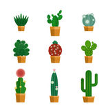 Cactus icons in flat style Royalty Free Stock Photos