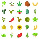 Cactus icons set, cartoon style. Cactus icons set. Cartoon set of 25 cactus vector icons for web isolated on white background Stock Photography