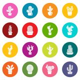 Cactus icons set colorful circles vector. Cactus icons set vector colorful circles isolated on white background Stock Photos