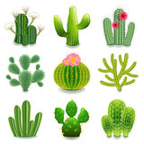 Cactus icons vector set Stock Images