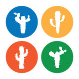 Cactus icons Stock Images